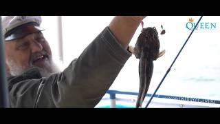Аренда катера Квин | Одесса до 12 гостей  | Комфорт-класс