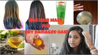 Egg Hair Mask for Dry Damged Hair | Collab with Be You | Indian Hair Care