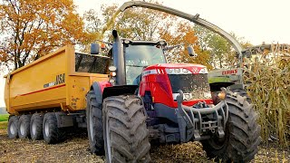 Mais hakselen Van Bakel Dairy 2015 | Claas Jaguar 980, MF 8737, MF 8670, CAT 966M, USA Equipment
