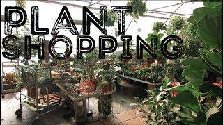 Plant Shopping At Jensen