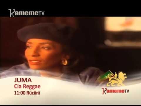 Cia Reggae Promo