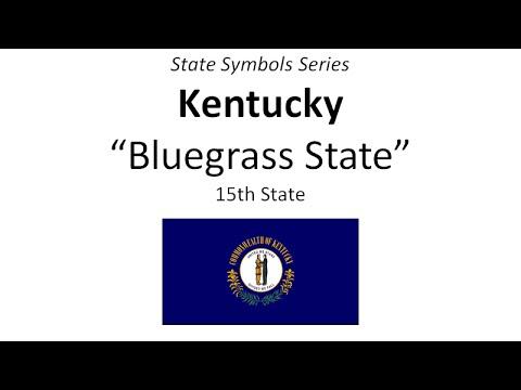 State Symbols Series - Kentucky
