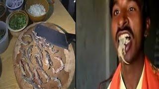 नशे के  लिए खाता है छिपकली एवं बिच्छू   SHOCKING: Man Eats Lizard Scorpion