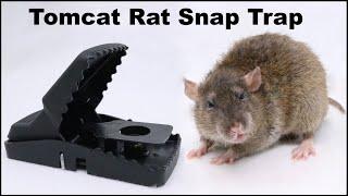 The Tomcat Rat Snap Trap & A Bobcat. Mousetrap Monday