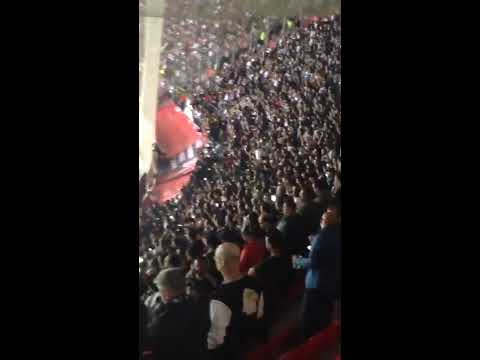 Lyon v Besiktas Crowd troubles Turks react to racism, French pitch invasion fighting