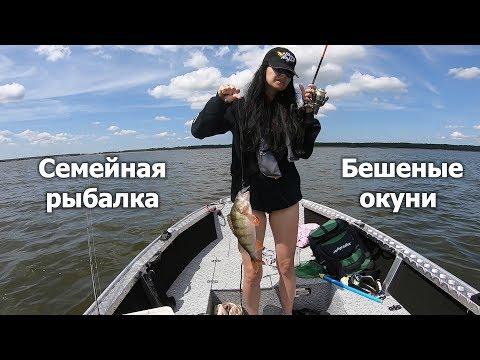 Бешеный клев окуня. Семейная рыбалка на новом Windboat. Crazy Perch Family Fishing.