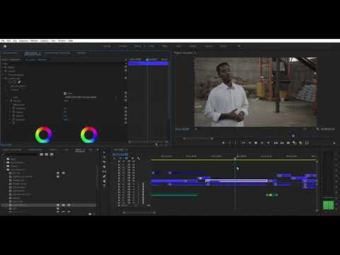 Adobe Premiere Pro 2020 Lut Issues