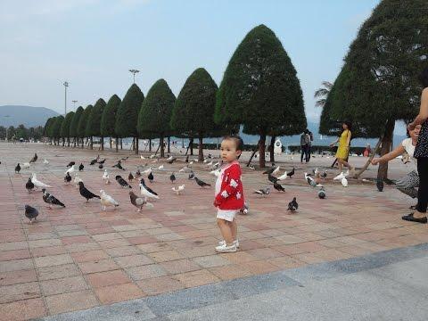 Liên khúc Con cò bé bé - Ba thương con - Bắc Kim Thang