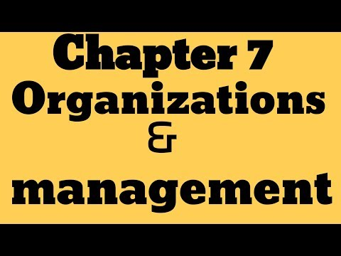 "IGCSE Business Studies _Chapter 7 ""Organisations and management """