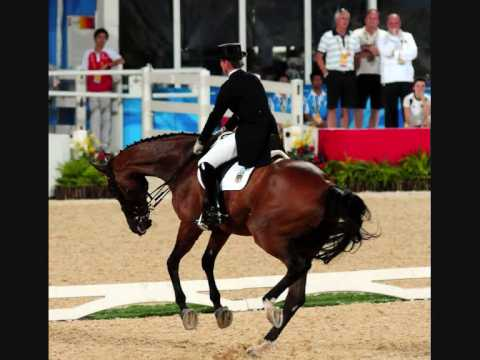 Doping Pferd