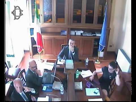 Audizione in commissione digitalizzazione di Angelo Sticchi Damiani e Mauro Minenna