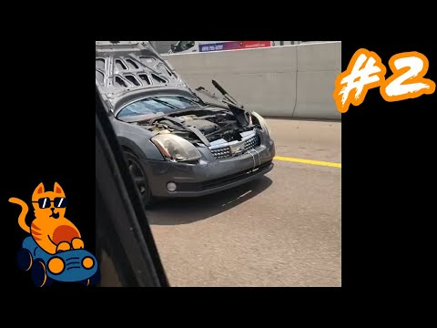 Car guys funny moments