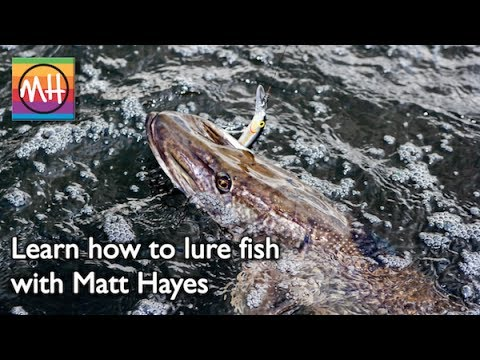 Learn how to lure fish with matt hayes youtube for Learn to fish