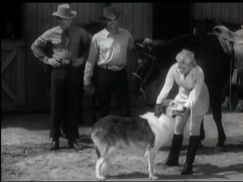 "Lassie - Episode #368 - ""Lassie Works a Miracle""  - Season 11, Ep. 16 - 12/27/1964"