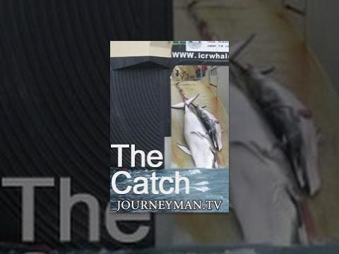 The Catch