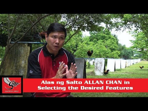 Alas ng Salto S01E10 part 4 Allan Chan - Selecting the Desired Features