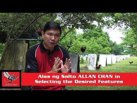 Alas ng Salto S01E10 part 4 Allan Chan - Selecting the Desired Features