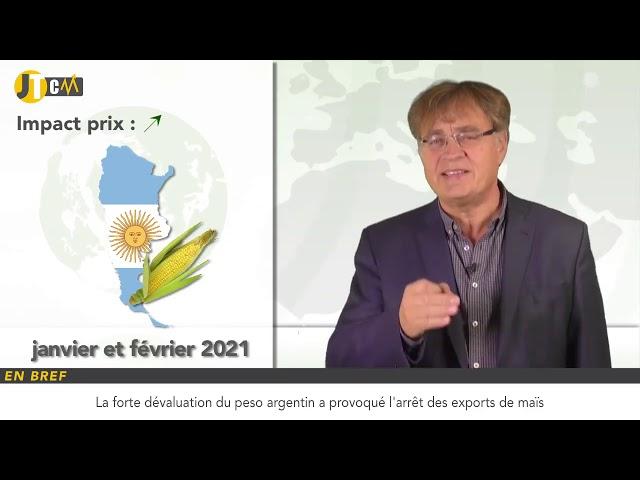 Un marché du maïs sous tension !