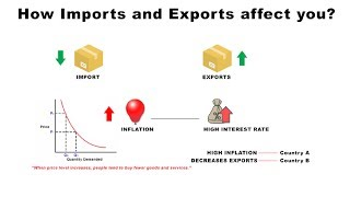 How Imports and Exports Affect You | Economics