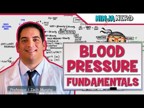 Blood Pressure | Fundamentals Of Blood Pressure
