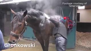 Kentucky Derby: Gronkowski