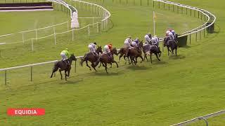 Vidéo de la course PMU PRIX DE VERBERIE