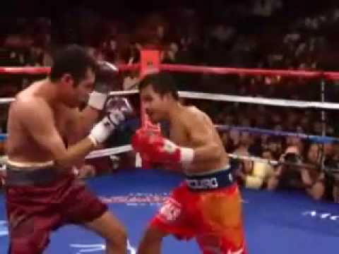 Download The Boxing Highlights Of 2008-2009