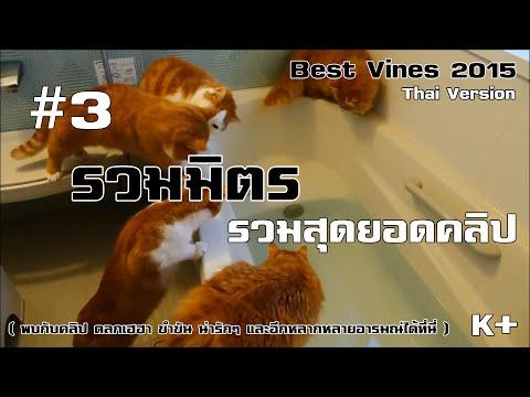 [THAI] #3 Best Vines 2015 : พากษ์(มั่ว)ไทย รวมมิตร รวมสุดยอดคลิป