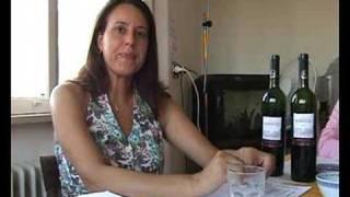 Cantina Boca do Monte - Vinhos Dom Robertto 2