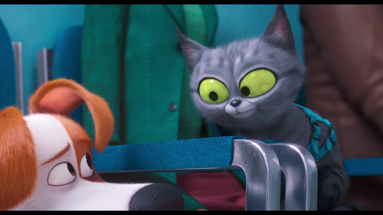 The Secret Life Of Pets 2 2019 Official Trailer Youtube