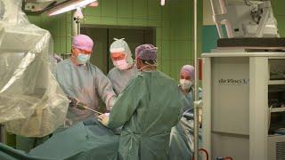 Häufige Krebserkrankungen: Magen – Darm – Lunge – Leukämien