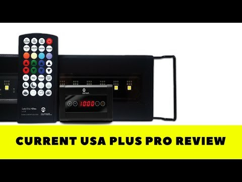 Current Usa Plus Pro Review