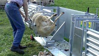 पशुपालन के काम मैं इस्तेमाल होने वाली आधुनिक मशीनें      Modern Farming Technology