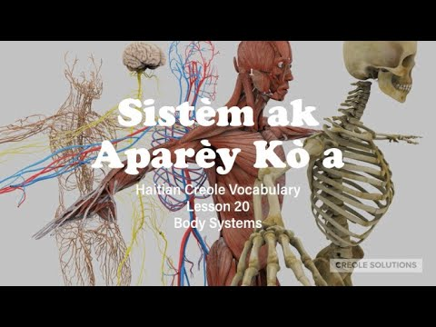 Lesson 20: Body Systems in Haitian Creole