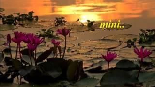 Alliyambal Kadavilannarakku Vellam....!!(Mini Anand)