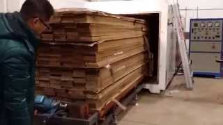 Electric Lumber Vacuum Dryer
