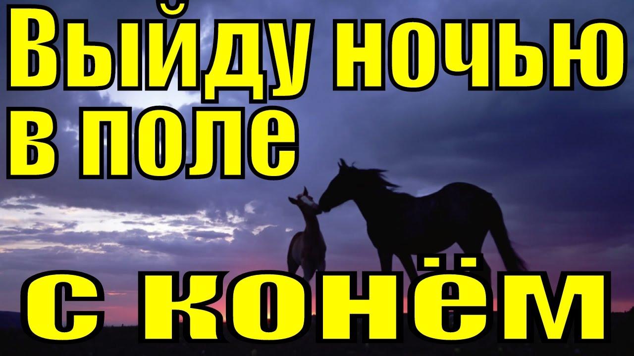 Песня про коня выйду