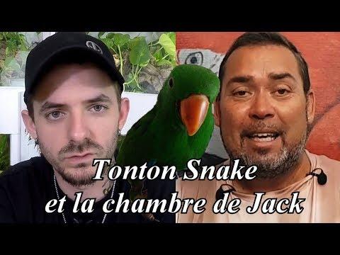 Tonton Snake et la chambre de Jack son eclectus