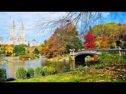 New York City - Central Park TV and Movie Sites Walking Tour