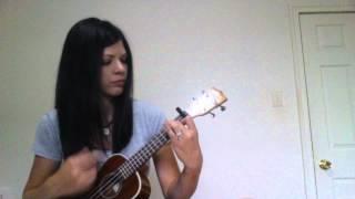 Titanium cover ukulele