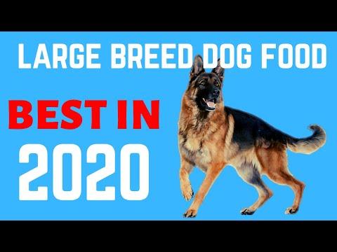 ✅Best Dog Food For German Shepherd 2020    5 Best Large Breed Dog Food.