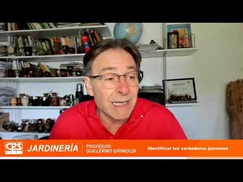 8° Charla de Jardinería – Bloque 1 – «Cómo identificar jazmines verdaderos»