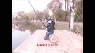 платная рыбалка в киеве на осетра и форель судака,веслоноса.