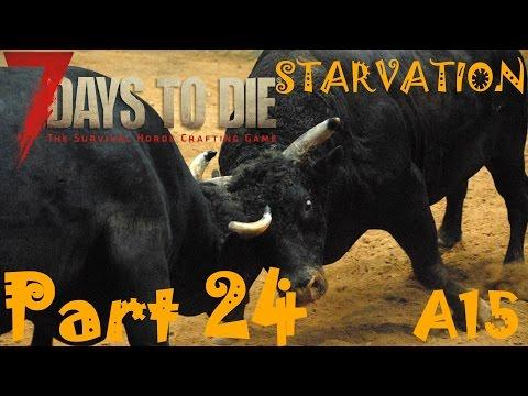 BULLS, COWS, COPPER, IODINE, ZINC & MESSA SECRET ROOM!  | 7 Days To Die Starvation A15 | Part 24