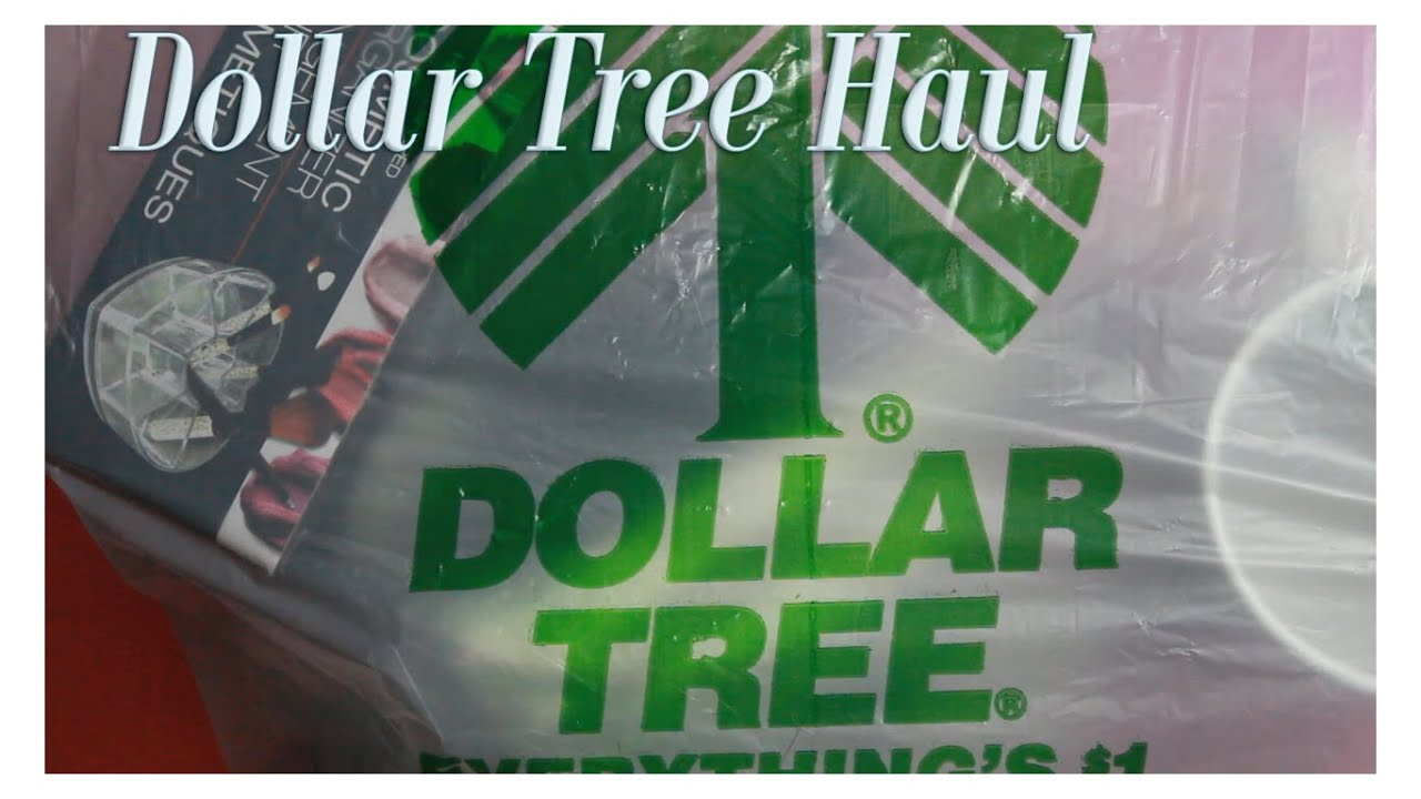 Dollar Tree Haul Wet N Wild, Makeup brushes and more - YouTube