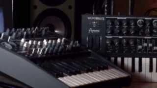 Arturia MicroBrute & MiniBrute Song : Lush