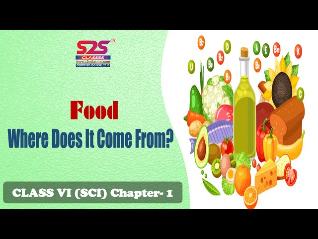 Class 6 Science - Food: Where does it come from? | Class 6 Science Sprint | Chapter 1 | NCERT | CBSE
