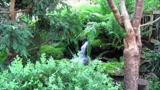 Viherpajan japanilainen puutarha..wmv