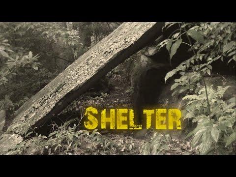 Sapling Shelter