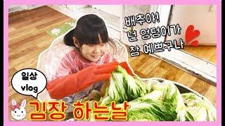 저희 김장했어요!! 과연 나다린의 김장 실력은?? Making kimchi 일상 vlog ㅣ토깽이네상상놀이터RabbitPlay